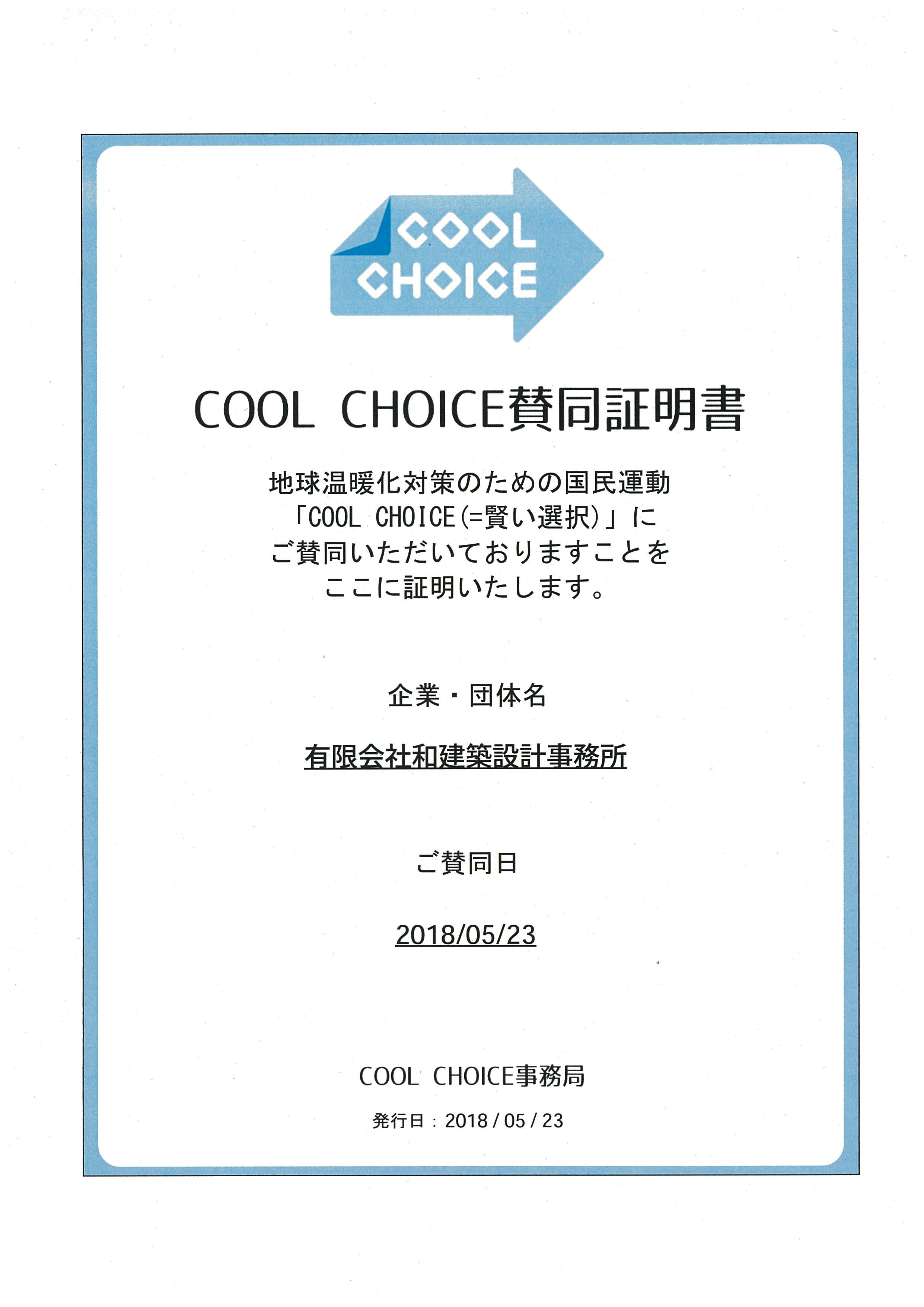cool choice.jpg